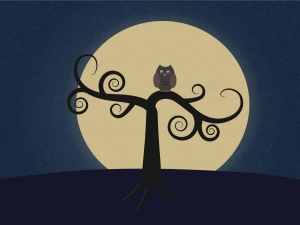 1262160_owl_in_the_moonlight